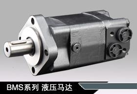 BMS-100液压马达